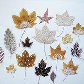 Jeseň už pomaly končí, ale ešte stále sa dajú zozbierať listy a takto krásne sa s nimi vyhrať 🍁🍂